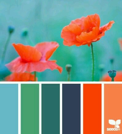 палитра смешивания цвета, рецепты цвета для фимо классик, софт, профешинал